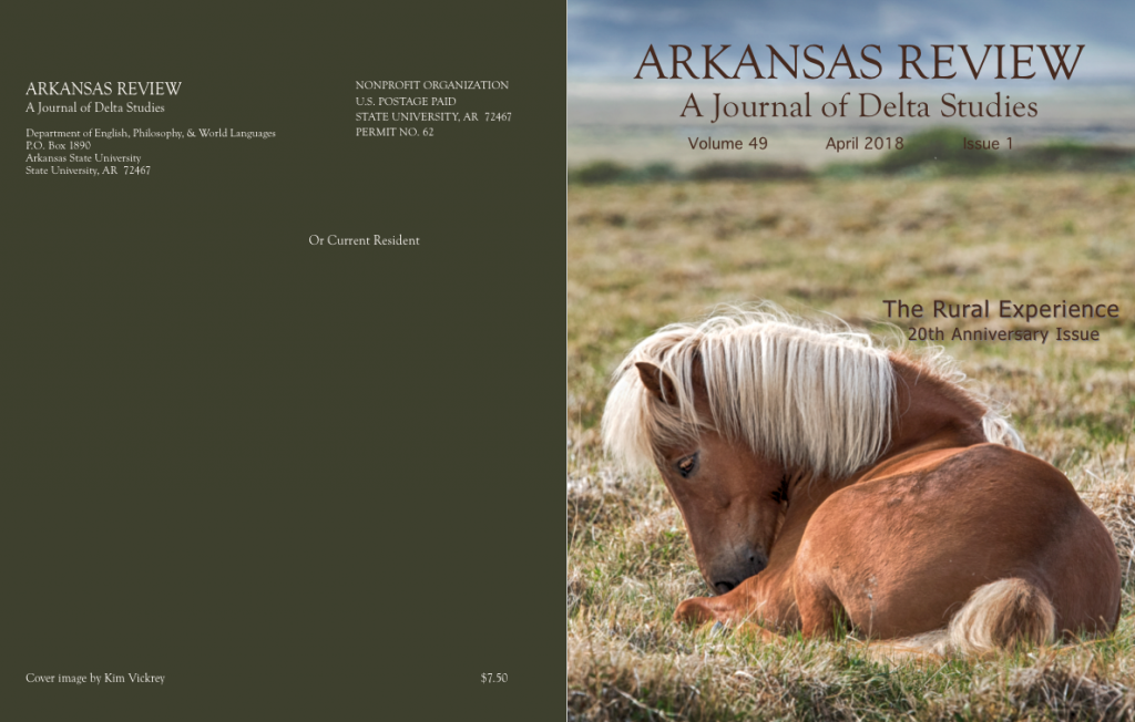 full cover: horse in field