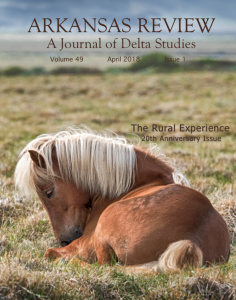 front cover: horse in field